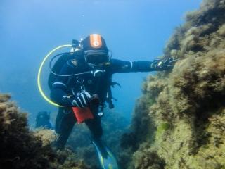 Подводный мир Судака_13